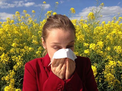 Alergia nie tylko latem